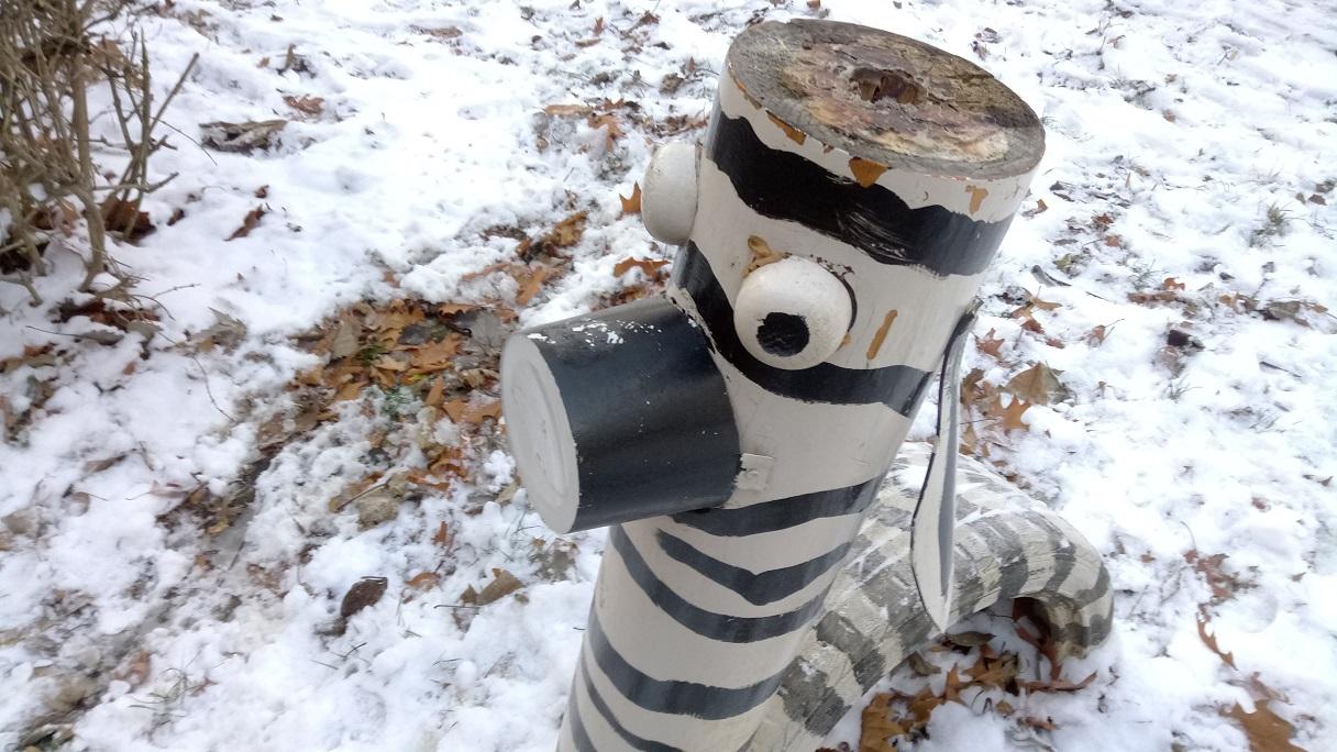 img_20161214_140724-min Recenzie camera foto Vernee Mars, 13 MP Sony dar slabi in acest caz