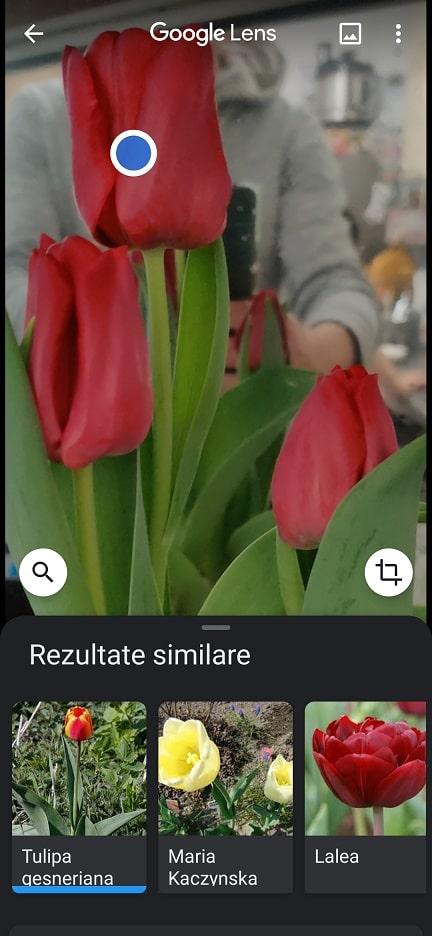 aplicatia pe care trebuie sa o ai! google lens este chiar utila!